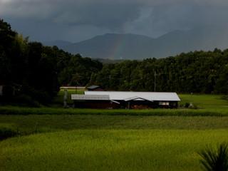 福始窯と虹